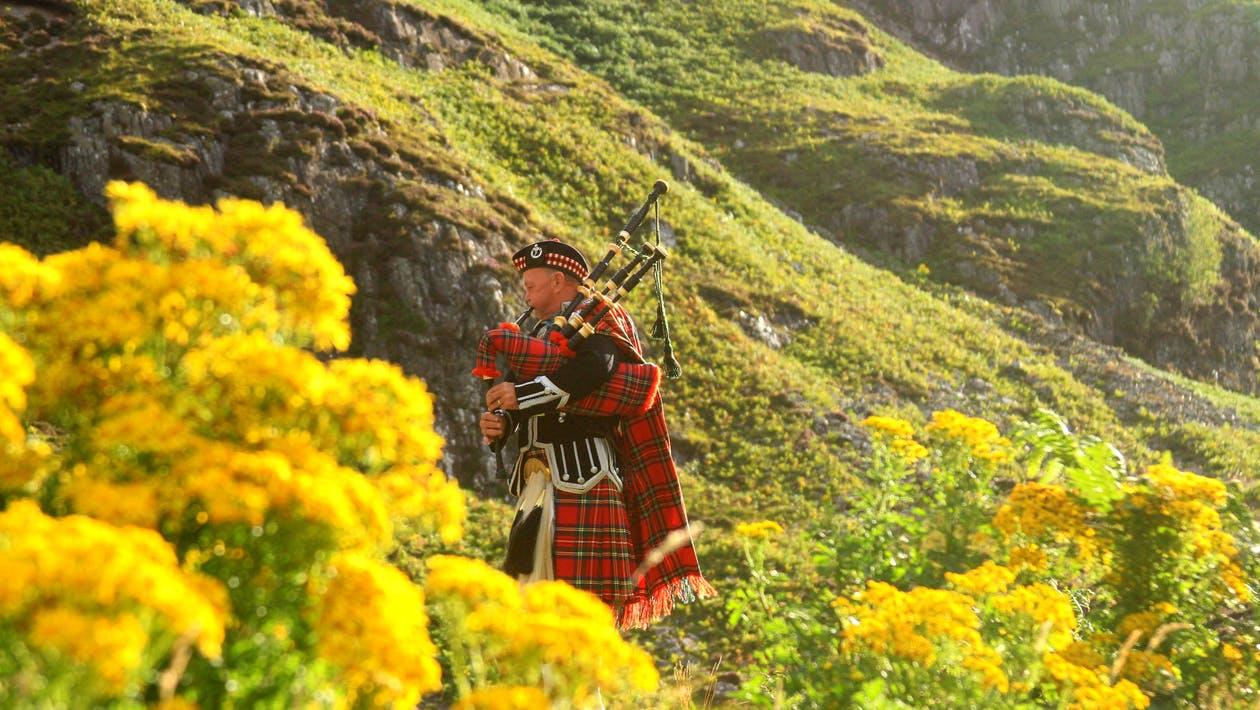 przeprowadzka szkocja